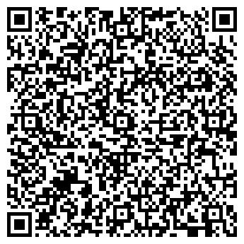 QR-код с контактной информацией организации Шарик на Праздник, ЧП