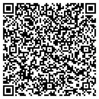 QR-код с контактной информацией организации Копылова, ИП
