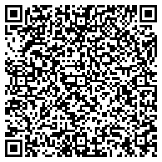 QR-код с контактной информацией организации Субъект предпринимательской деятельности SFX