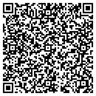 QR-код с контактной информацией организации Molly Shop