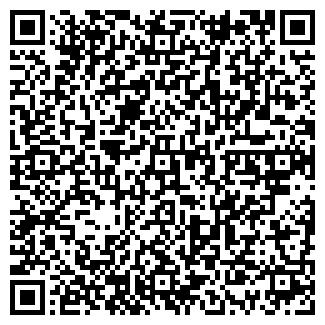 QR-код с контактной информацией организации ИП Крезо М.В.
