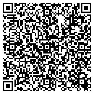 QR-код с контактной информацией организации Libero Festa