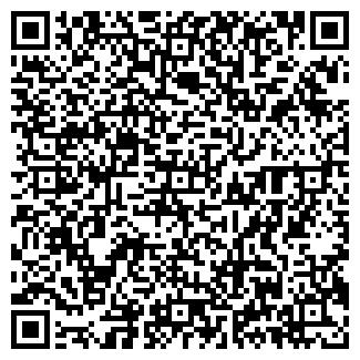QR-код с контактной информацией организации ВИЗА, ООО