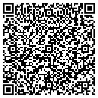 QR-код с контактной информацией организации Алдис-принт, Частное предприятие