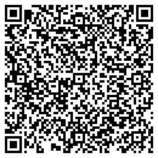 QR-код с контактной информацией организации DSI Company