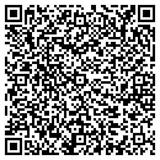 QR-код с контактной информацией организации Chess Tattoo