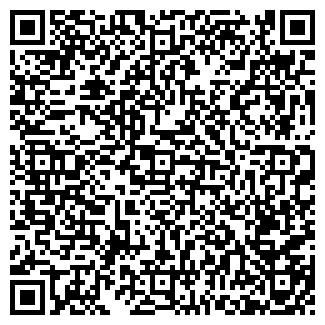"""QR-код с контактной информацией организации ИП """"Арай"""""""