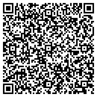QR-код с контактной информацией организации Ип Мокко
