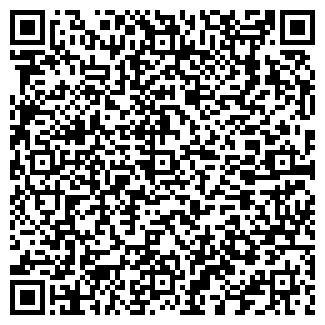 QR-код с контактной информацией организации ИП Шишмарев