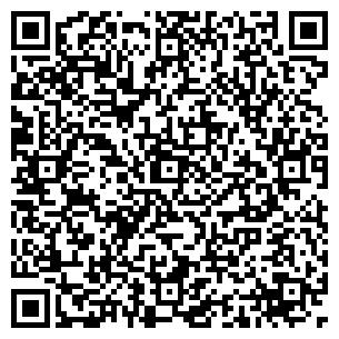 QR-код с контактной информацией организации Родикс, ТОО
