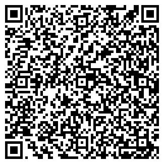 QR-код с контактной информацией организации dsl-group