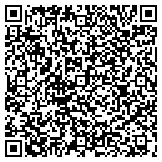 QR-код с контактной информацией организации Динго, ЧП