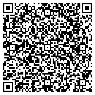 QR-код с контактной информацией организации Art,ИП