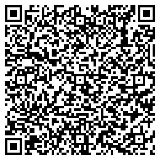 QR-код с контактной информацией организации ЛИЗИНГ-ПЛЮС