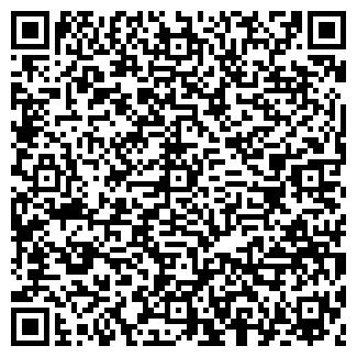 QR-код с контактной информацией организации СТРОЙМИКСТ