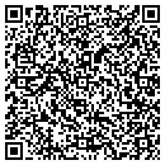QR-код с контактной информацией организации Несстор, ООО