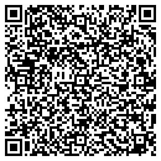 QR-код с контактной информацией организации Литвин,СПД