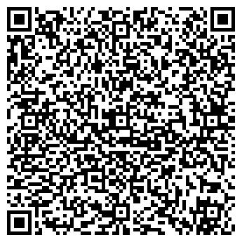 QR-код с контактной информацией организации Ortus (Ортус), ИП