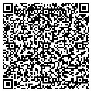 QR-код с контактной информацией организации Вико НС, ТОО
