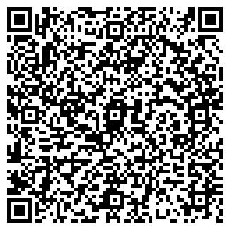 QR-код с контактной информацией организации Tineks Система СМ, ТОО