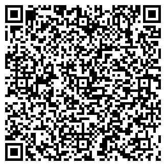 QR-код с контактной информацией организации ДОЛЖИКОВ ИП