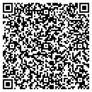 QR-код с контактной информацией организации ИП Борк Д.В.