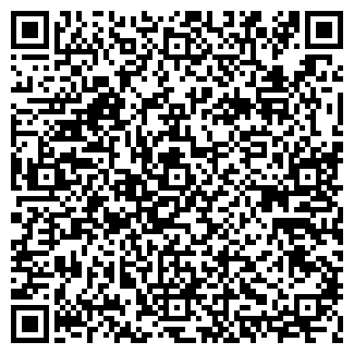 QR-код с контактной информацией организации Vinylit