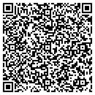 QR-код с контактной информацией организации Интернет магазин От А до Я, ЧП