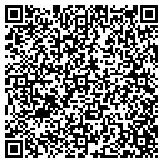 QR-код с контактной информацией организации Субъект предпринимательской деятельности ПП Геник