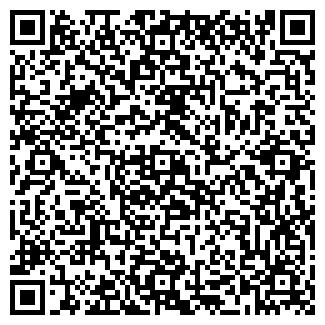 QR-код с контактной информацией организации ИП Минин О.Г.