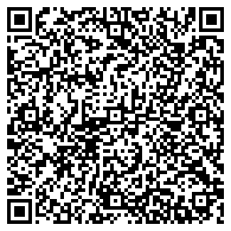 QR-код с контактной информацией организации Субъект предпринимательской деятельности SUNDEZIGN