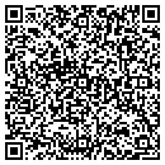"""QR-код с контактной информацией организации ИП """"DDI"""""""