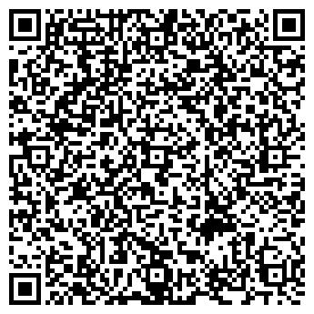 QR-код с контактной информацией организации Дембицкий, ЧП