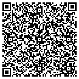 QR-код с контактной информацией организации DDI, ИП
