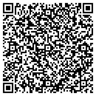 QR-код с контактной информацией организации Кружков, ИП
