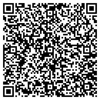 QR-код с контактной информацией организации Константа, ЧП
