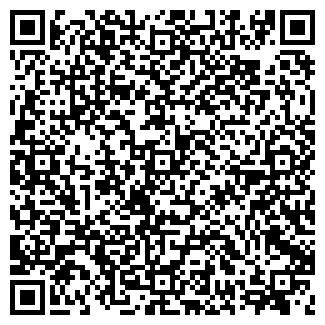 QR-код с контактной информацией организации ССТ, ООО