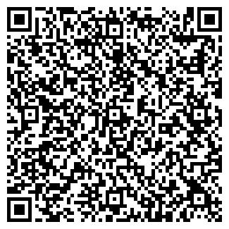 QR-код с контактной информацией организации Старостенко,ЧП