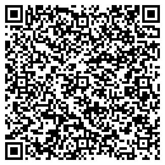 QR-код с контактной информацией организации Миникаева, ИП