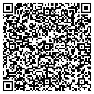 QR-код с контактной информацией организации Lighting, ИП