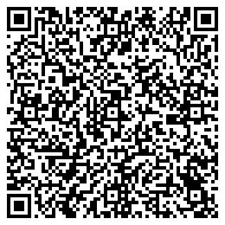 QR-код с контактной информацией организации Riso, ТОО