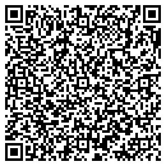 QR-код с контактной информацией организации Видеркер,ИП