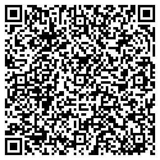 QR-код с контактной информацией организации АЛИНУР, ИП