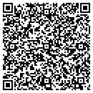 QR-код с контактной информацией организации Пуск, ИП