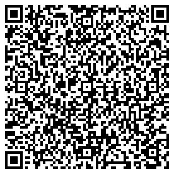 QR-код с контактной информацией организации Вэлбис, ООО