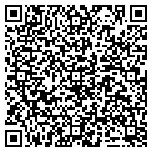 QR-код с контактной информацией организации DM GROUP Inc., ТОО