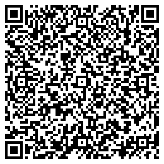 QR-код с контактной информацией организации Тураева, ИП