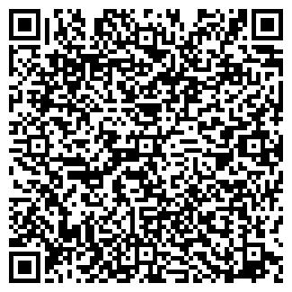 QR-код с контактной информацией организации Шостак, ЧП