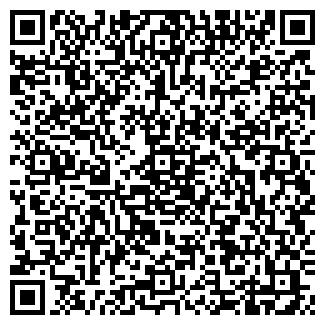 QR-код с контактной информацией организации Шашель вуд shasel, ООО