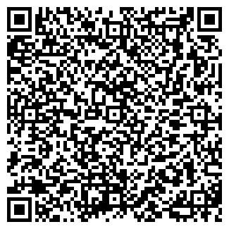 QR-код с контактной информацией организации Файбер, ООО